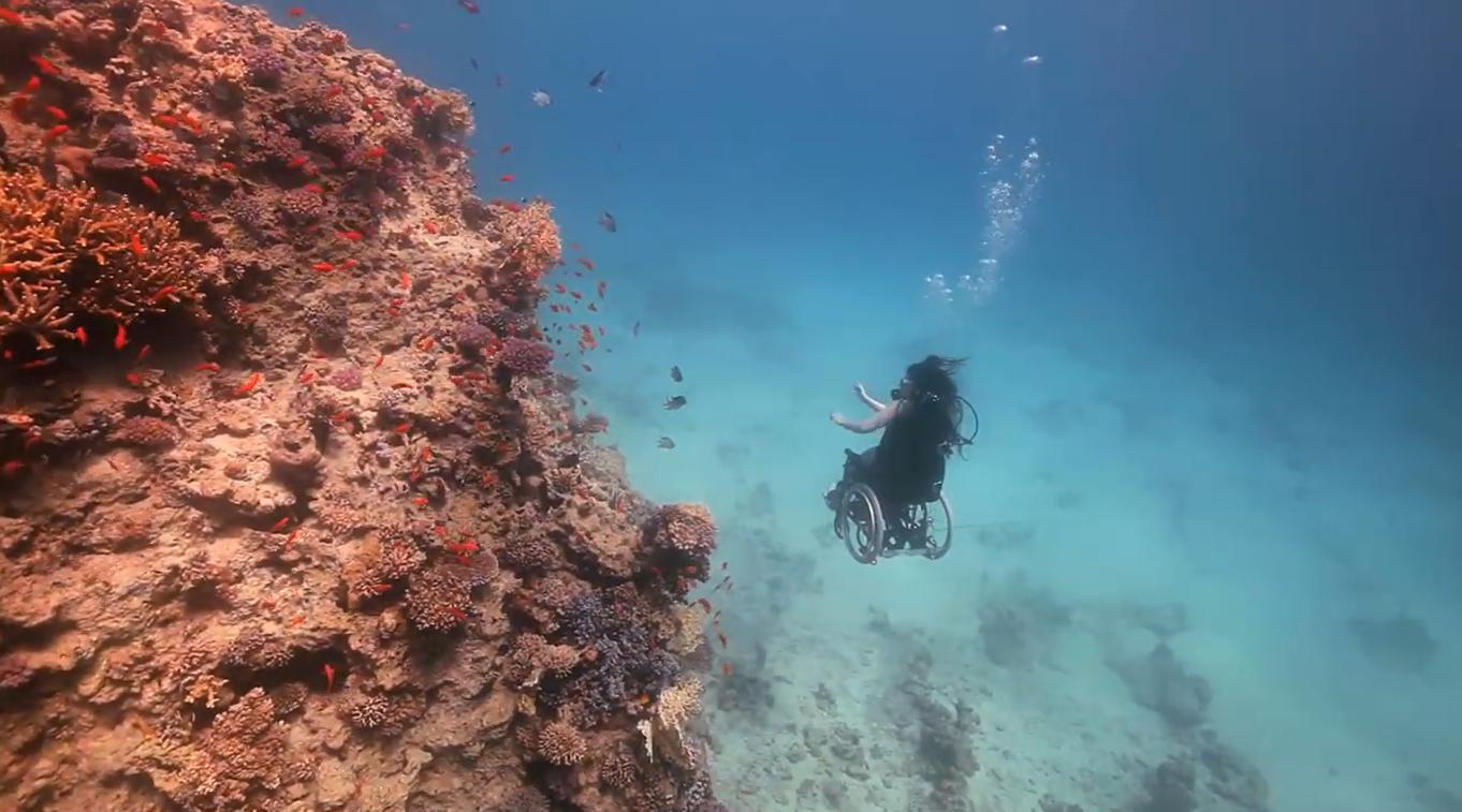 Coral diving – wheelchair diving